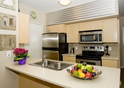 2011_Project_Profile_Spice_Condos_032
