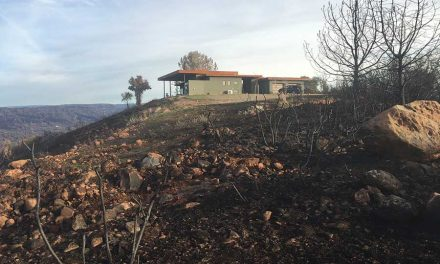 Recovering From the California Wildfires: How ICF is Playing a Role